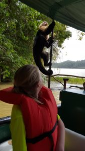 Monkey on the boat!